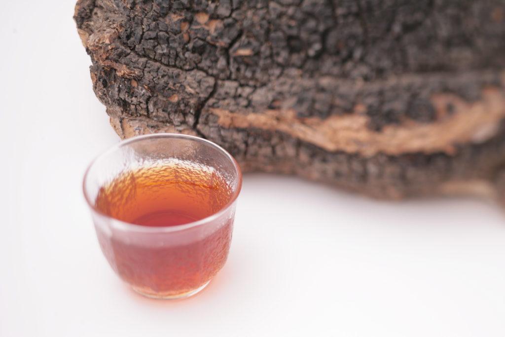 カバノアナタケ茶